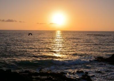 Sun Setting on the Atlantic Ocean - Gold Crest Motel - Wildwood Crest NJ